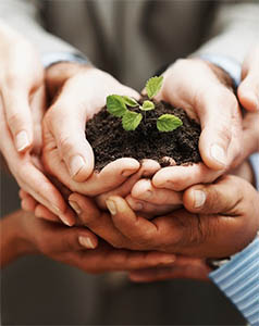 Helping your business to grow