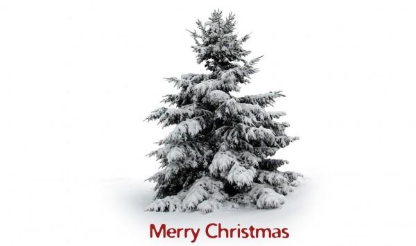 merry-christmas-e1293237073905